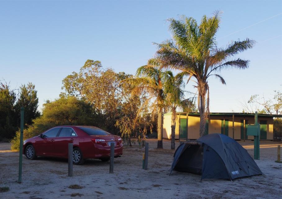 Blog un tour a deux voyage monde australie perth camping pinnacles kangourou