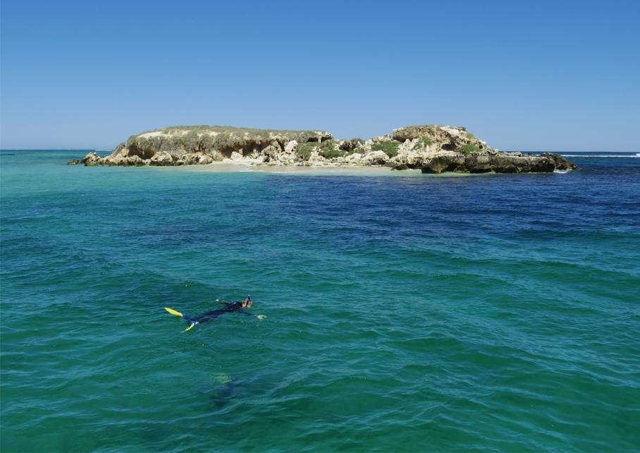 Blog un tour a deux voyage monde australie perth pinnacles desert nager swim with sea lions