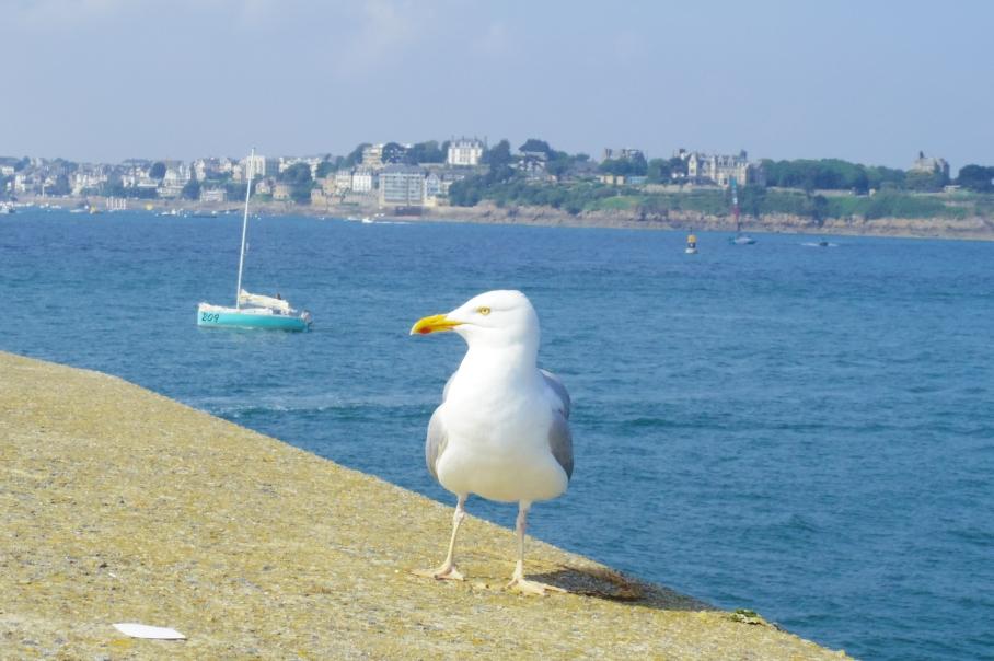 Bretagne - untouradeux.com