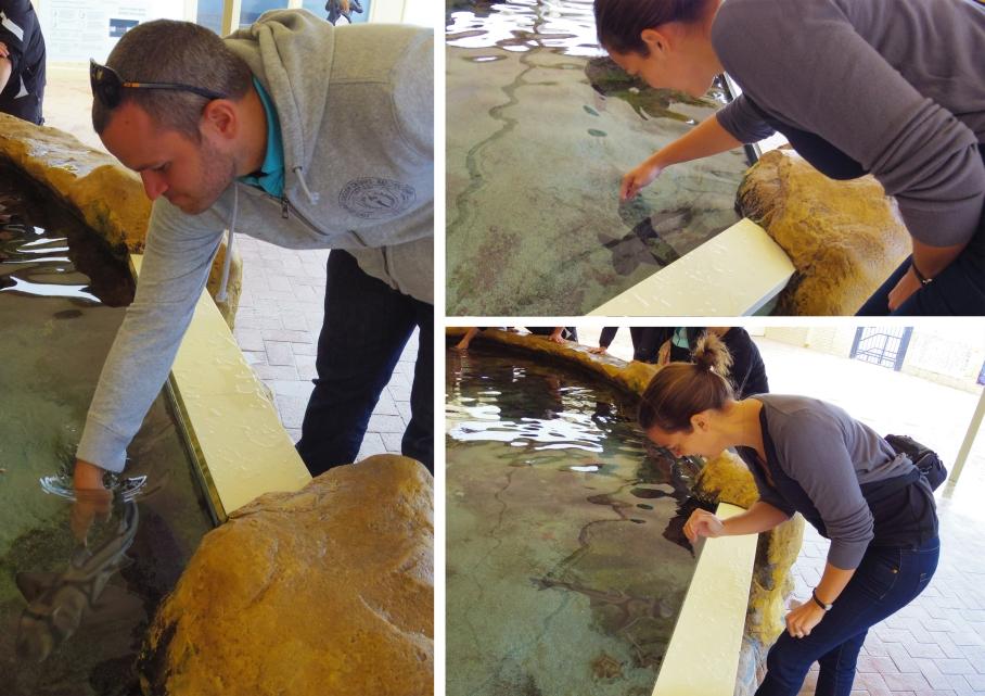 Aquarium - by untouradeux.com