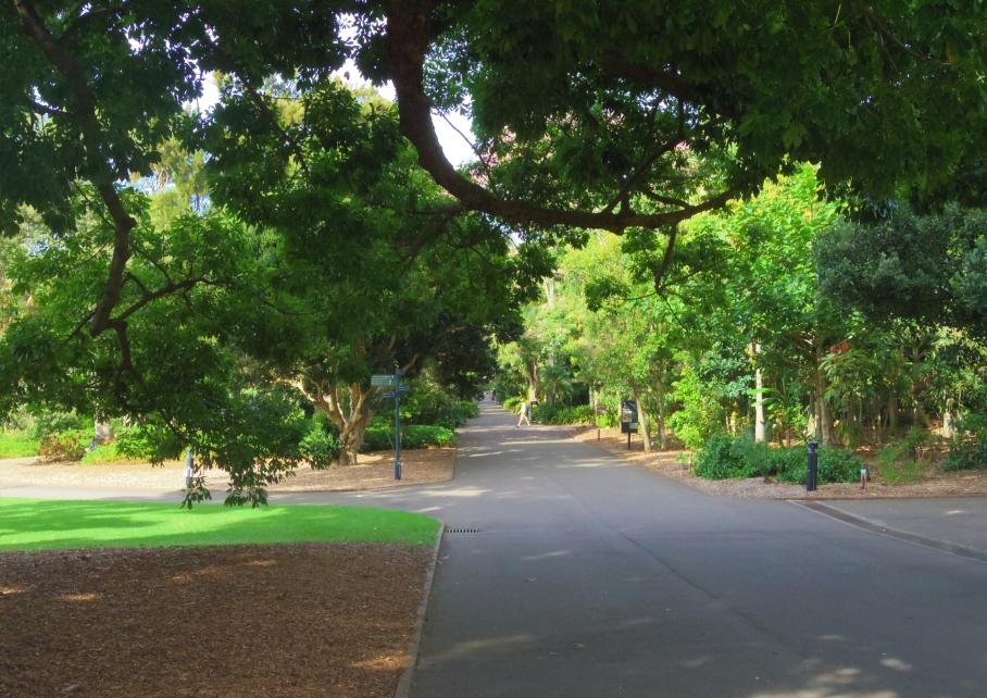 Un tour a deux travel voyage australie Sydney Royal Botanic Garden