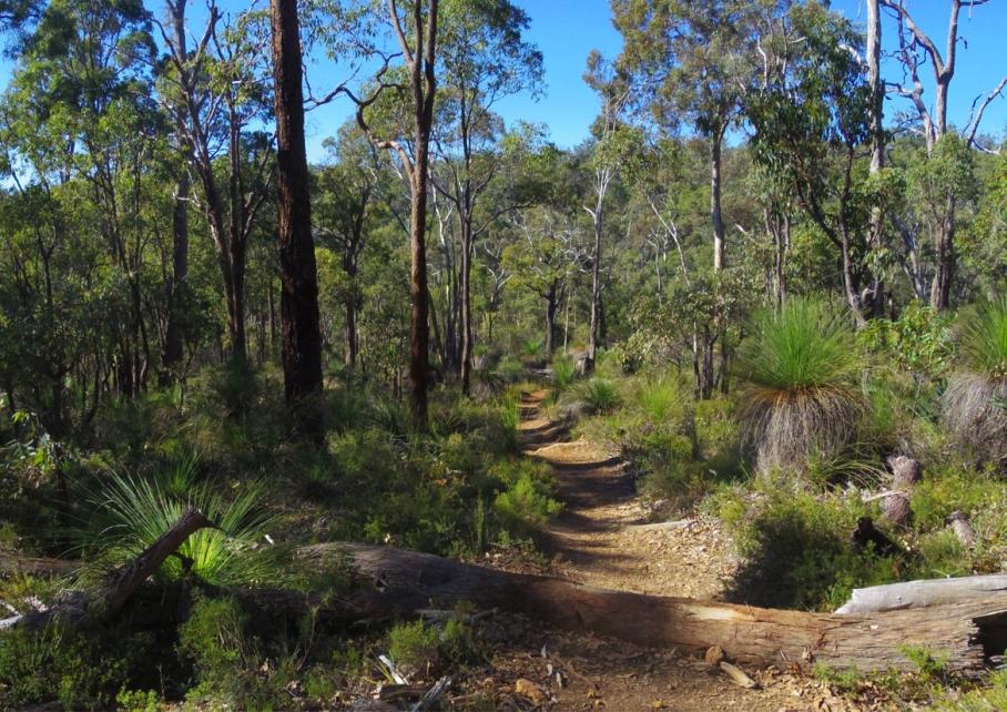 Perth Australie Voyage Blog Travel un tour a deux Trail Kalamunda Australia