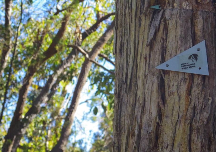 Perth Australie Voyage Blog Travel un tour a deux Trail Kalamunda Hike Randonnee Western Australia