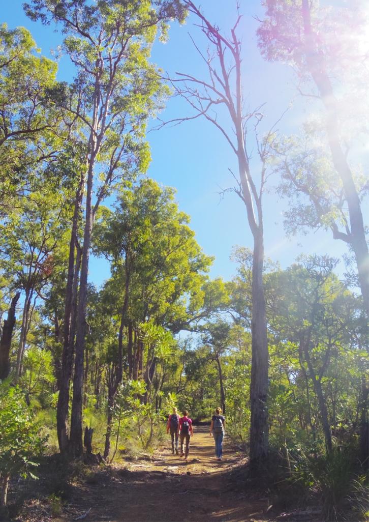 Perth Australie Voyage Blog Travel un tour a deux Trail Kalamunda Randonnee Western Australia