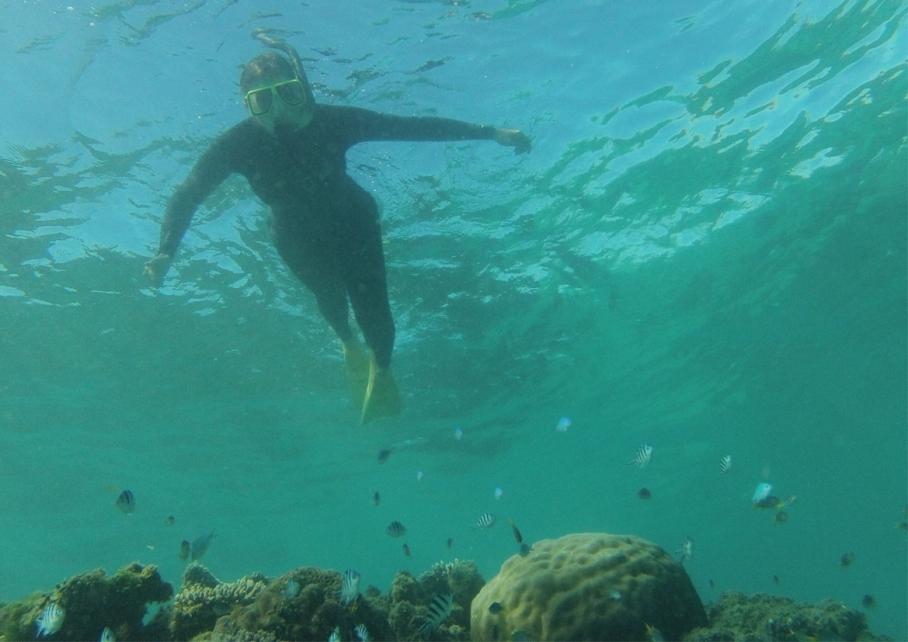 Un tour a deux Exmouth Voyage Australie Travel Requin baleine Whale shark Beach Turquoise Bay Snorkelling