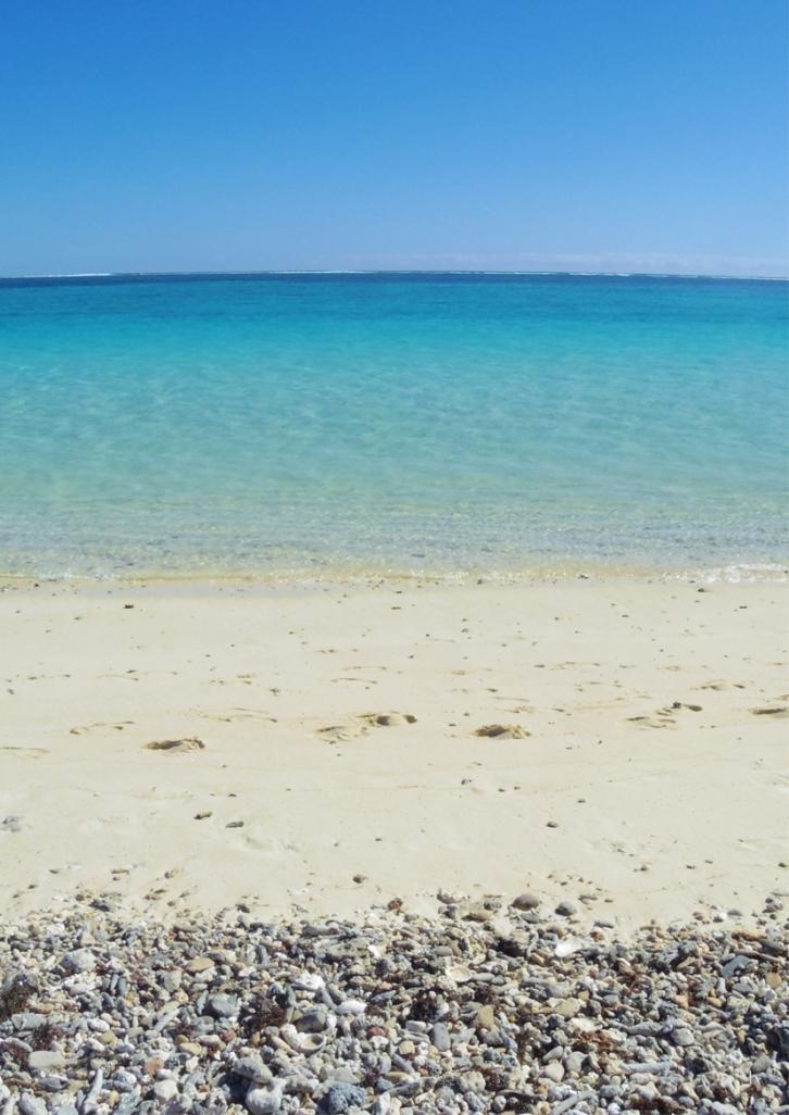 Un tour a deux Exmouth Voyage Australie Travel Requin baleine Whale shark Plage Turquoise Bay