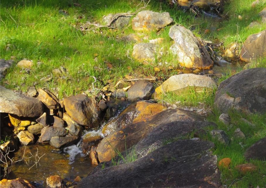 Perth Australie Voyage Blog Travel un tour a deux Trail Paruna Sanctuary Numbat track Hike Australia 11 riviere