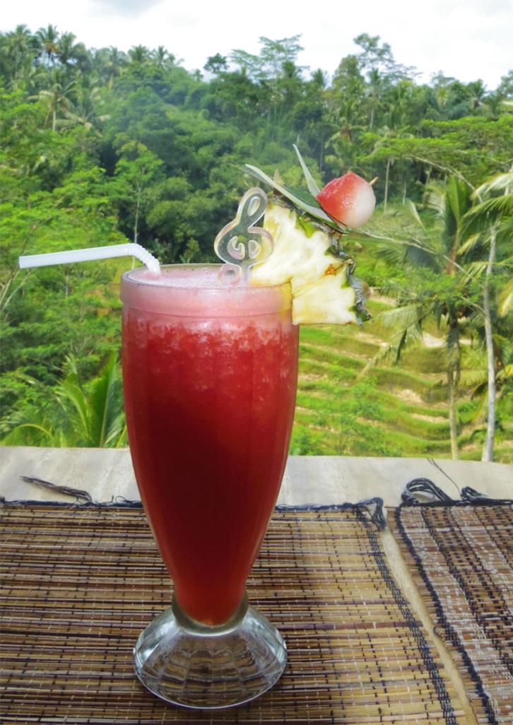 Un tour a deux voyage holidays travel Bali vacances watermelon juice