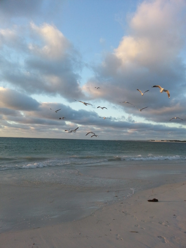 Un tour a deux blog voyage travel perth australia lancelin western australia sunset birds