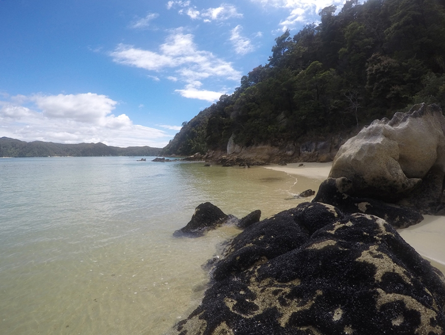 Un tour a deux blog voyage travel nouvelle zelande new zealand abel tasman park kayak go pro tasman sea vue plage beach