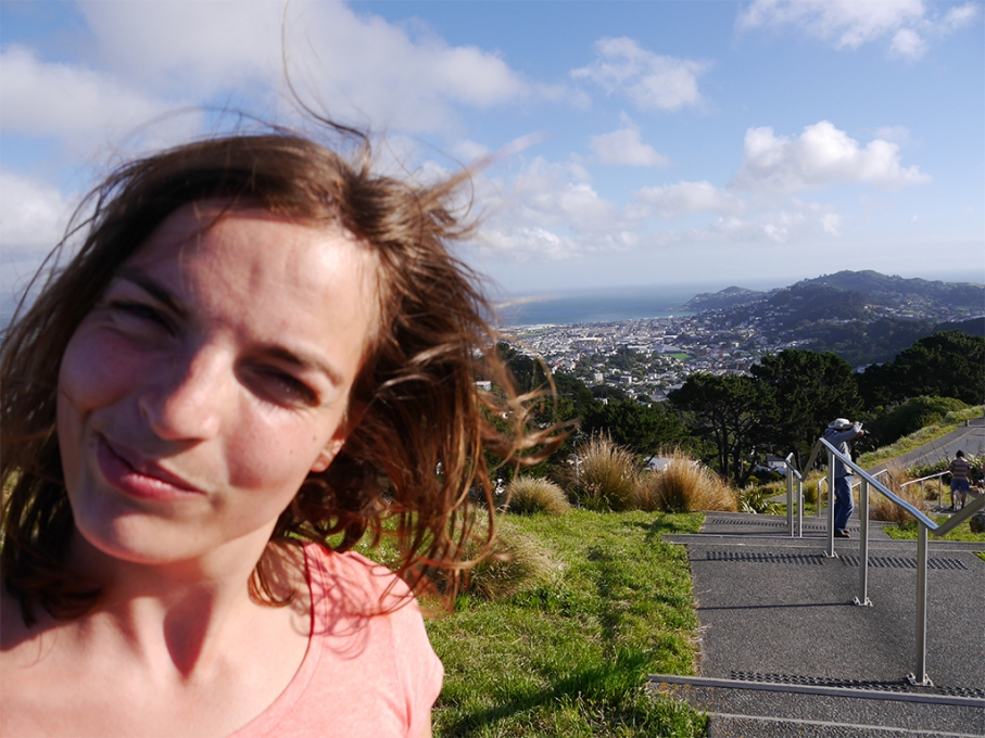 Un tour a deux blog voyage travel nouvelle zelande new zealand wellington vue mont victoria