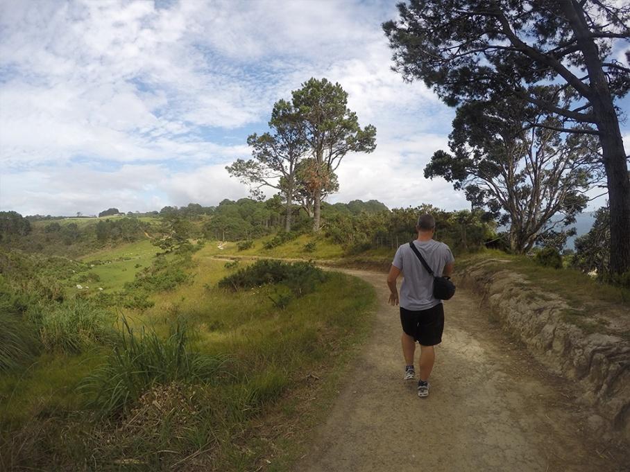 Blog Nouvelle Zelande travel voyage untouradeux tauranga vieuw vue coromandel track