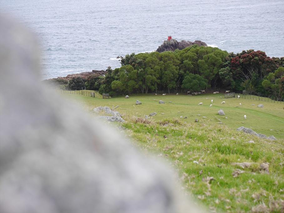 Blog Nouvelle Zelande travel voyage untouradeux tauranga vieuw vue tauranga mauro mouton