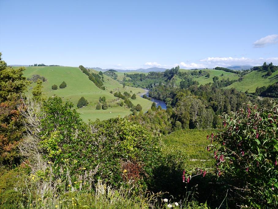 untouradeux blog voyage vue nouvelle zelande new zealand drive paysages