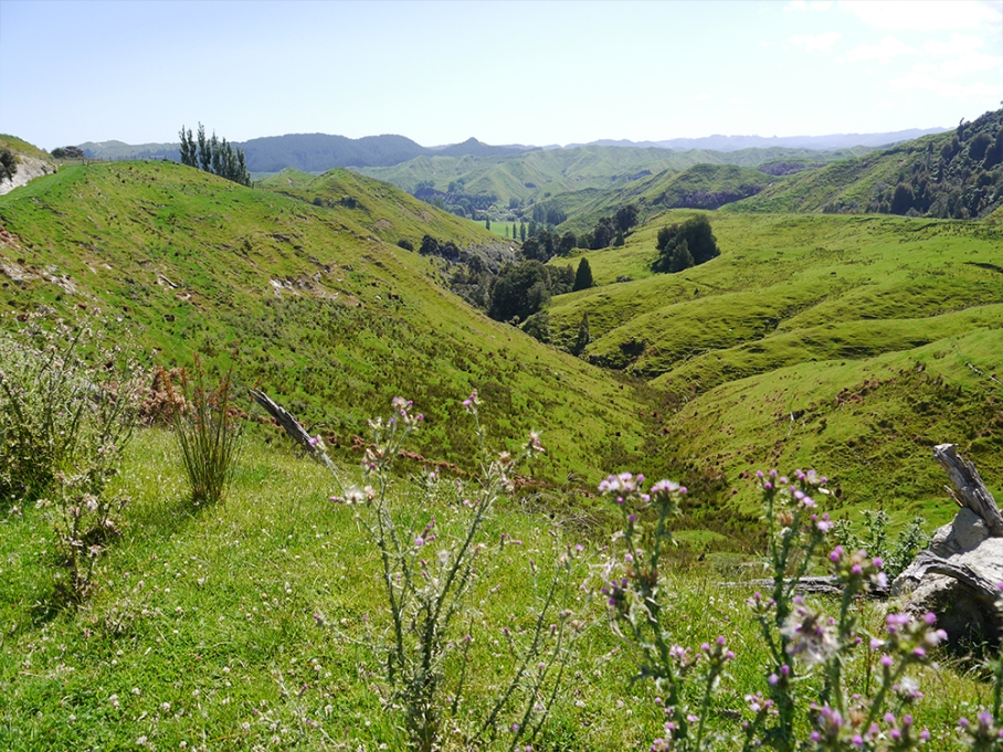 untouradeux blog voyage vue nouvelle zelande new zealand drive riviere