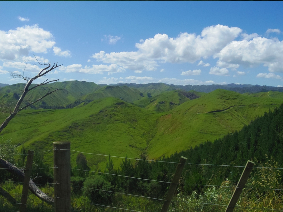 untouradeux blog voyage vue nouvelle zelande new zealand drive road