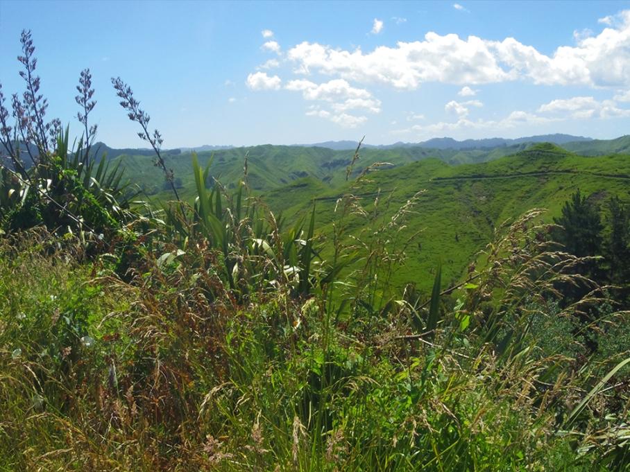 untouradeux blog voyage vue nouvelle zelande new zealand drive view