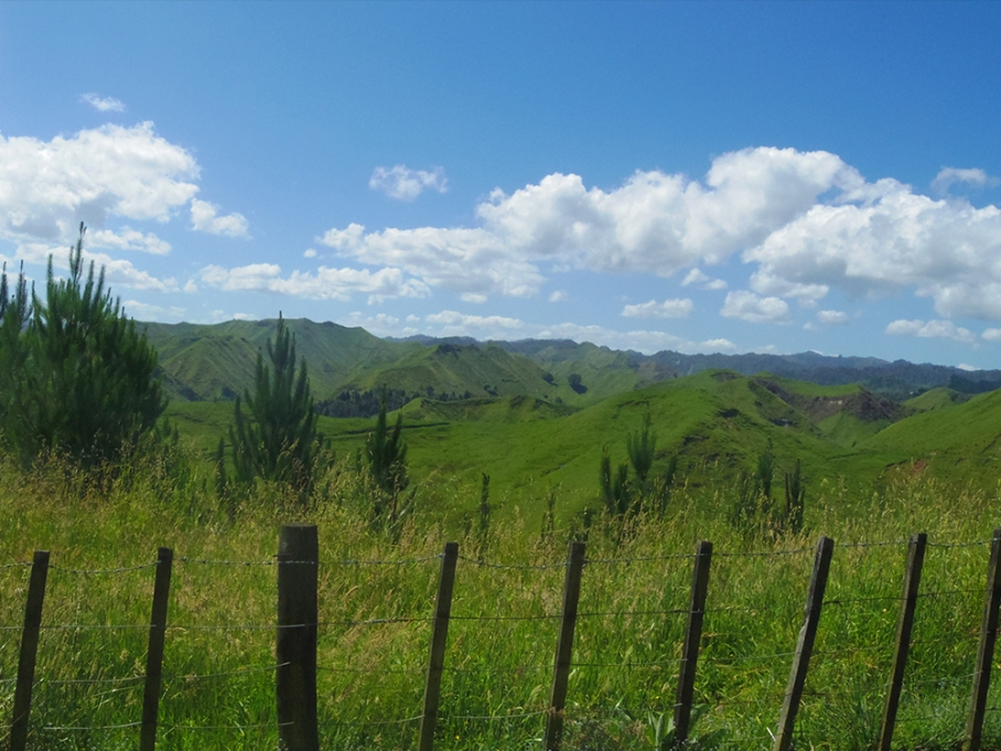 untouradeux blog voyage vue nouvelle zelande new zealand drive
